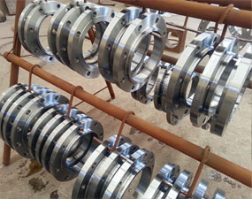 Stainless Steel flanges Manufacturer