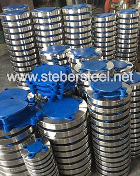 317L Stainless Steel Flanges manufacturer