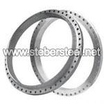 SS 317L Ring Joint Flanges manufacturer