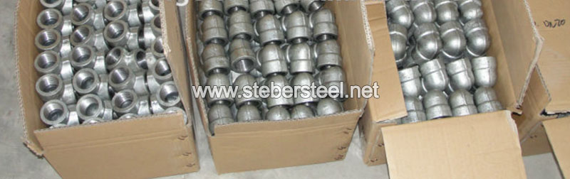 317L Stainless Steel Forged Fittings Manufacturer in India