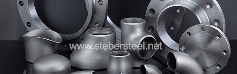 317L Stainless Steel Swage Nipple Manufacturer