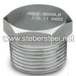 ASTM A182 SS 317L Hex Bush manufacturer
