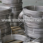 Stainless Steel 317L Seamless Coiled Tubing