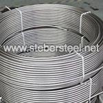 TP317L 19.05MM Seamless Instrumetation Coiled Tubing Manufacturer
